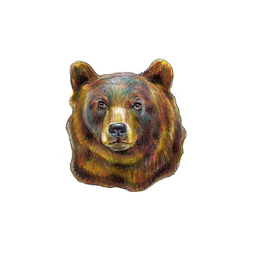 Honey Bear Medicine Print
