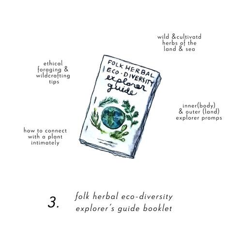 Eco Explorer Guide Booklet