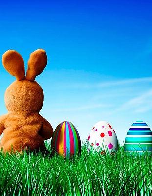 easter-bunny-back-99ff66-1024x768.jpg