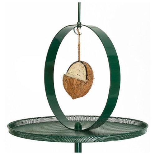 Coconut feeder