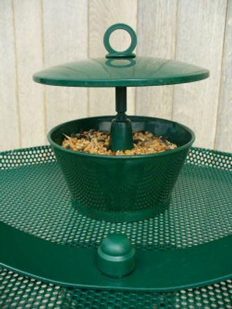 Sunflower seed & mealworm feeder