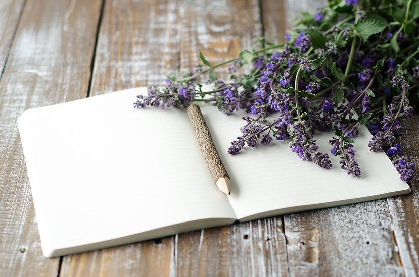 lavender, wand and book image