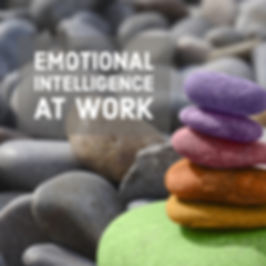 Emotional Intelligence workshop.png