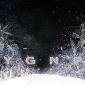 YGNP2018SS.jpg