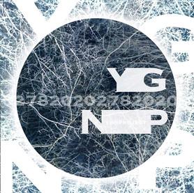 YGN20202のコピー.jpg