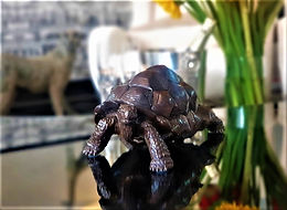 """""""The Giant Tortoise of Aldabra"""" - Signed Bronze Sculpture by Damien Colcombet"""