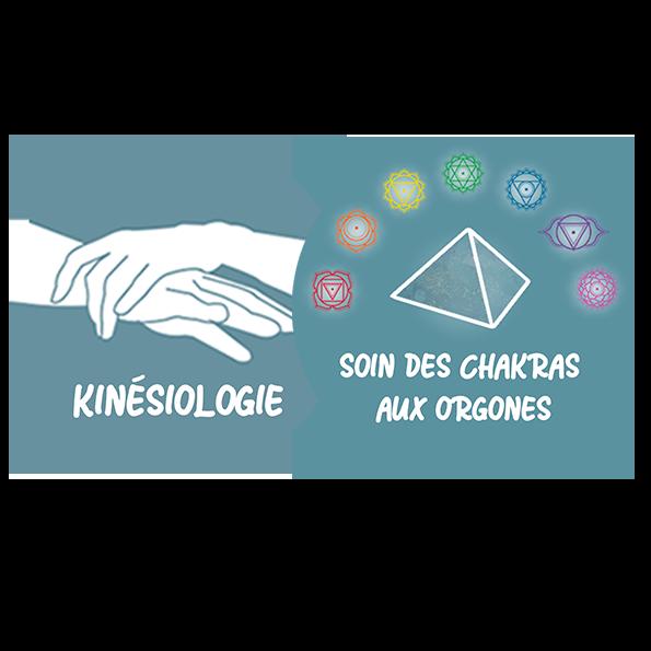 Kinésiologie + Soin aux Orgones