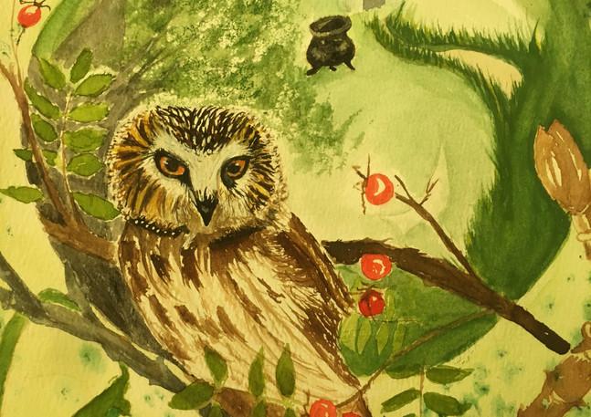 Athena's Messenger Owl