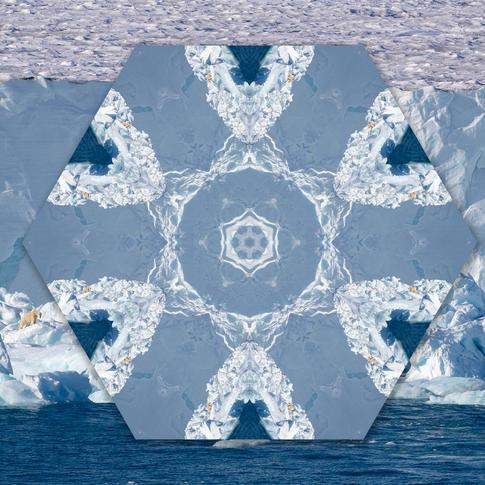 Polar bear kaliedoscope