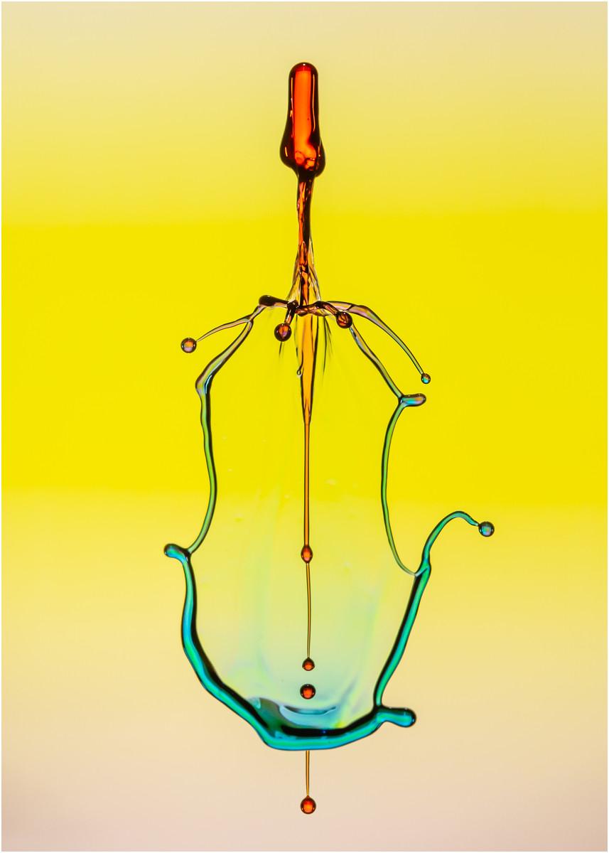 Cello © Hugh Letheren