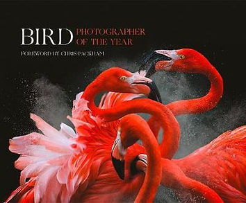 Bird Photographer of the Year 2018