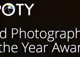 My image in Bird Photographer of the Year 2017
