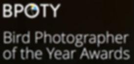BPOTY Bird photographer of the Year Awards 2017