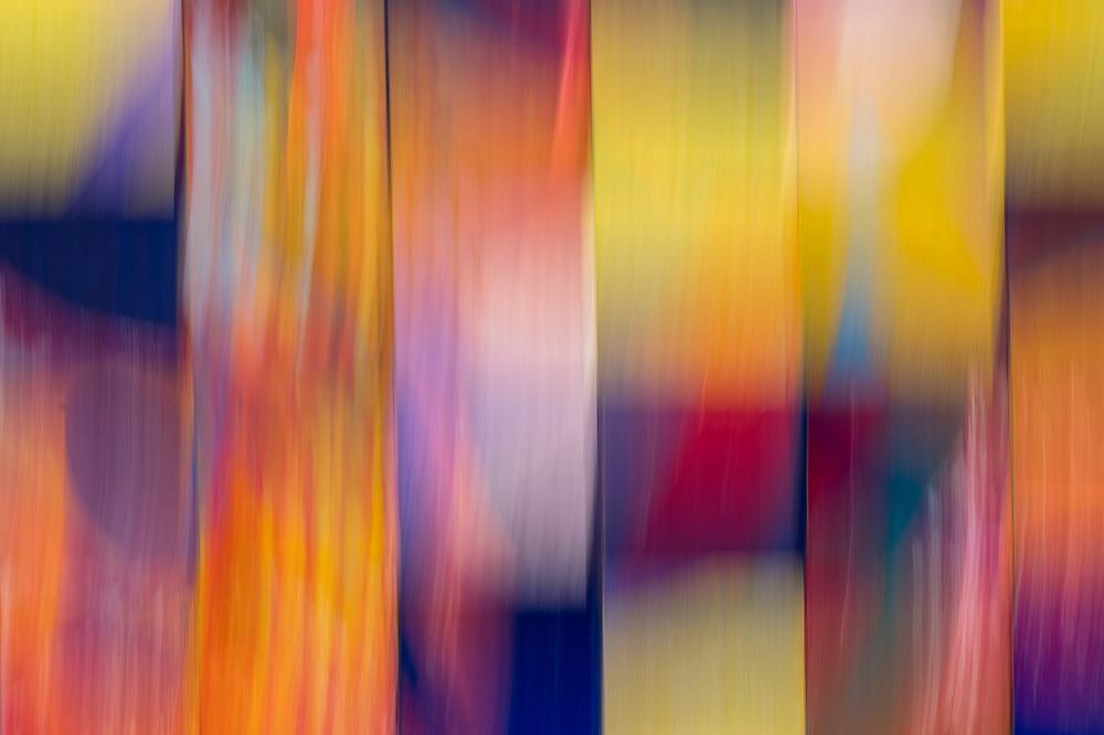 A riot of colour © Alex Rosen