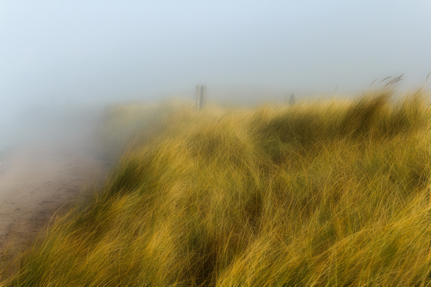 Dawlish Warren mist