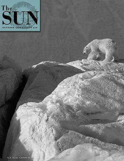 Cover image - Polar Bear The Sun Magazine, October 2019
