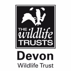 Network Rail survey ends tomorrow + important response from Devon Wildlife Trust