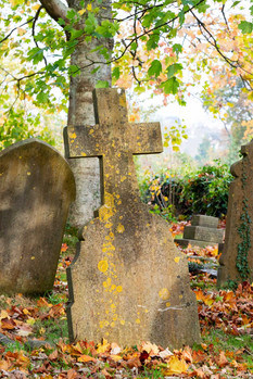 Teignmouth Cemetery in autumn