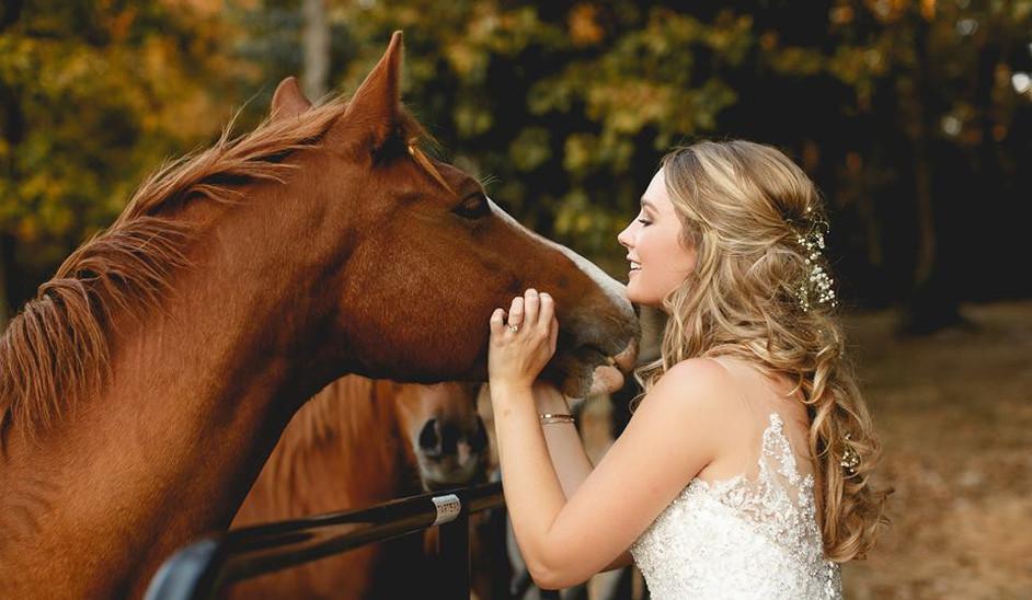 horsebridenashville.jpg