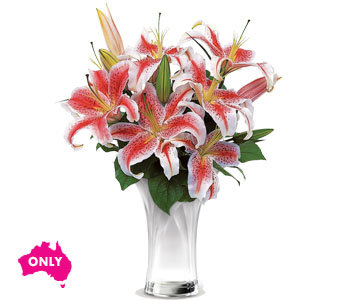 Celebrate Lillies