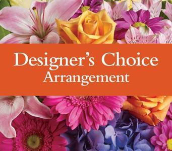 Designer's Choice - Arrangement