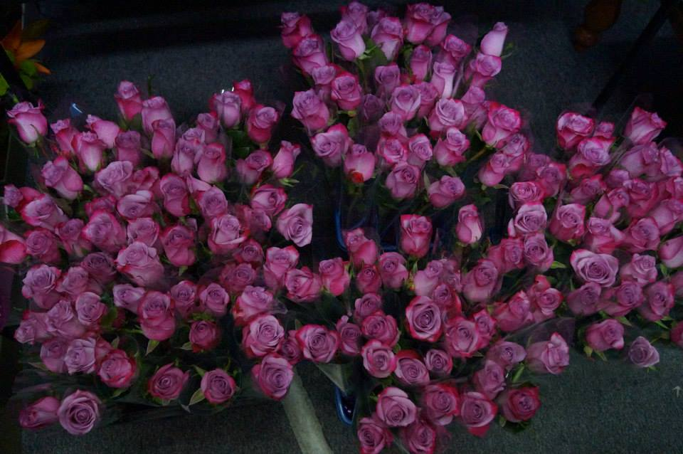 Individually Wrapped Roses - Attendance gifts.jpg