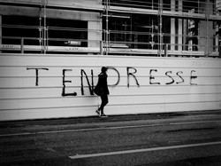 Urgence... Grenoble, France 2014.