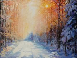 Winter Forest road.jpg