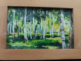 Birch Trees, green grass .jpg