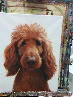 Pet Portrait- Custom Order.jpg