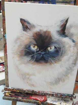 Custom Order - Cat.jpg