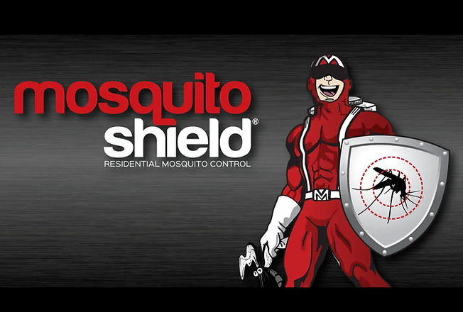 Mosquito-Shield-of-Southwest-Fort-Worth-