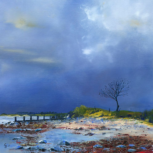 Windswept Tree Alnmouth Winter Giclee Pr