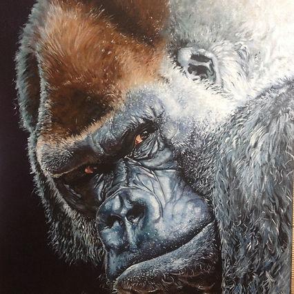 Kathryn Lyall gorilla.jpg