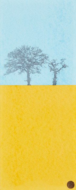 Favourite Trees-Blue