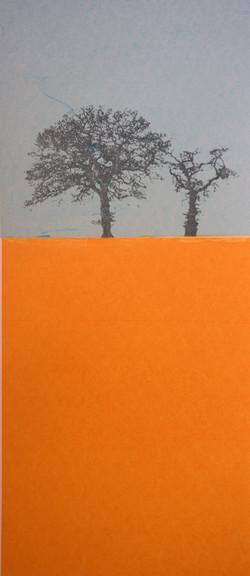 favourite+Trees+Grey
