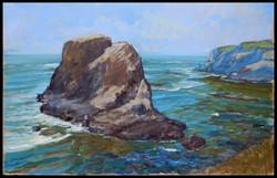 Pacific-Coast-Med-Res.Gallo