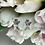 Thumbnail: Kolczyki srebrne motylki