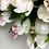 Thumbnail: Kolczyki złote kwiatki cyrkonie