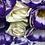 Thumbnail: Kolczyki złote kółka cyrkonie