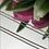 Thumbnail: Łańcuszek złoty lisi ogon