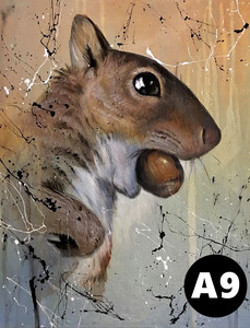 A09.jpg
