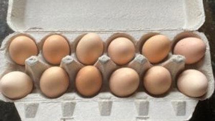 Farm Fresh, Free-Range Eggs (One Dozen)