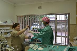 Veterinary Surgery Pretoria