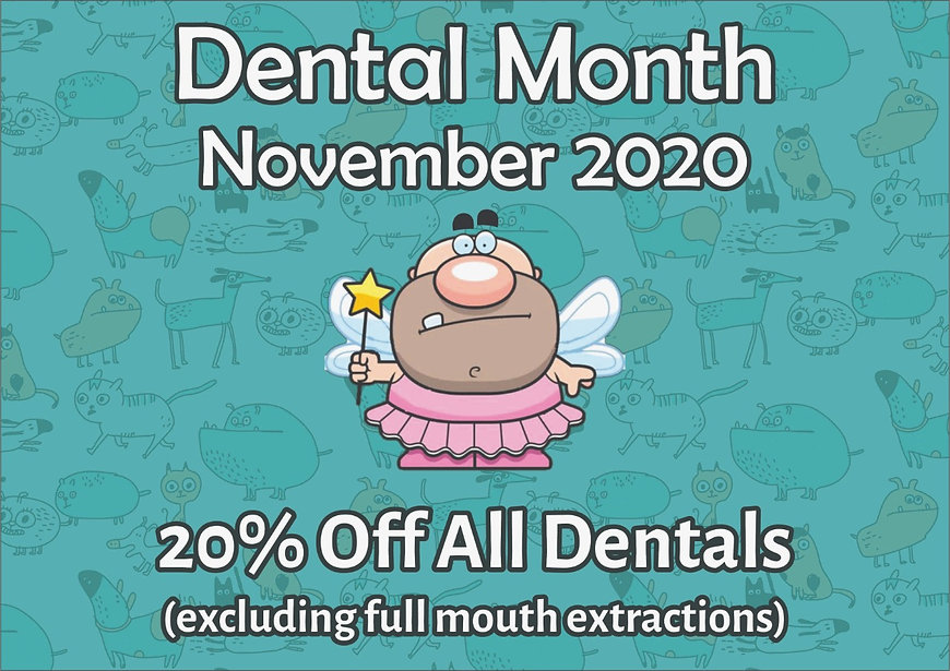 MAC Dental Nov 2020.jpg