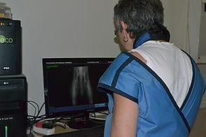 X rays Vet Pretoria