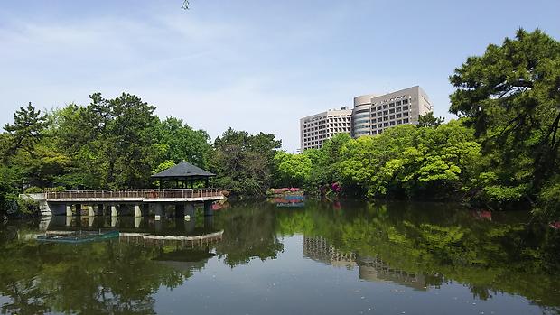 緑の鶴舞公園20180426.png