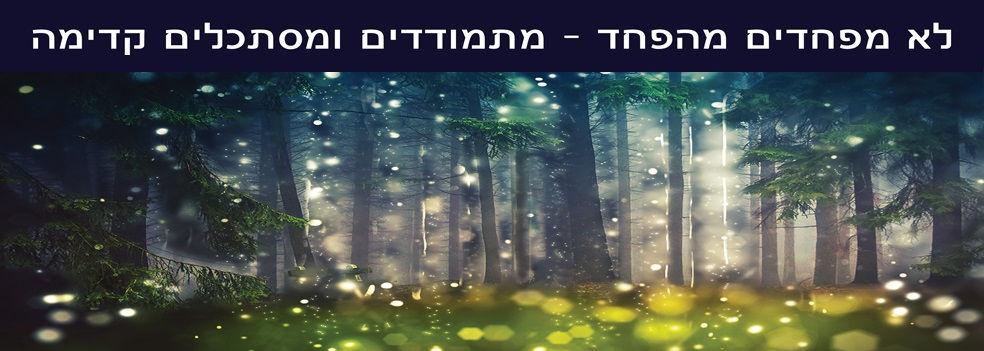wingwave israel