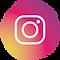 Logo Instagram pt-01.png