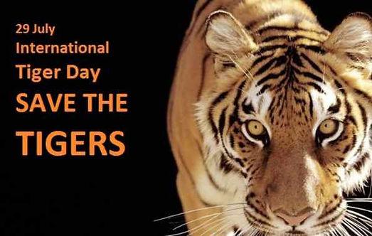 अंतरराष्ट्रीय बाघ दिवस या ग्लोबल टाइगर डे | 29 जुलाई